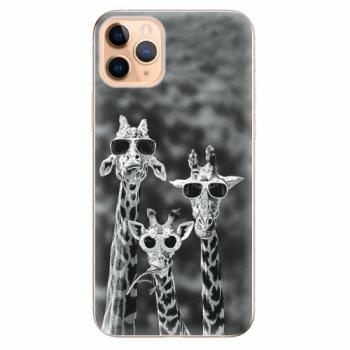 Silikonové pouzdro iSaprio - Sunny Day - iPhone 11 Pro Max
