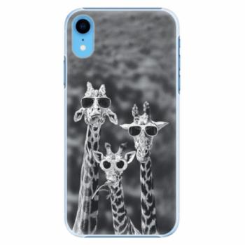 Plastové pouzdro iSaprio - Sunny Day - iPhone XR