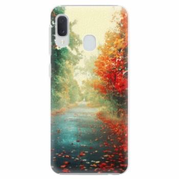 Plastové pouzdro iSaprio - Autumn 03 - Samsung Galaxy A20e