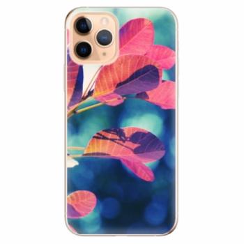 Odolné silikonové pouzdro iSaprio - Autumn 01 - iPhone 11 Pro