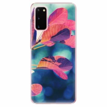 Plastové pouzdro iSaprio - Autumn 01 - Samsung Galaxy S20