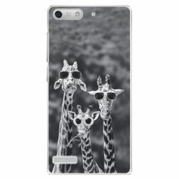 Plastové pouzdro iSaprio - Sunny Day - Huawei Ascend G6