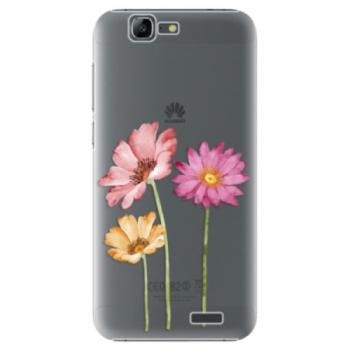Plastové pouzdro iSaprio - Three Flowers - Huawei Ascend G7