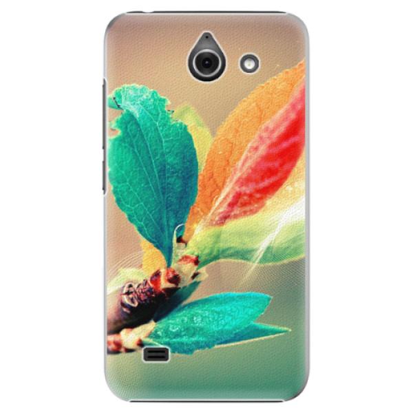 Plastové pouzdro iSaprio - Autumn 02 - Huawei Ascend Y550