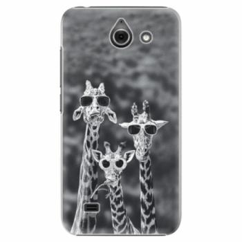 Plastové pouzdro iSaprio - Sunny Day - Huawei Ascend Y550