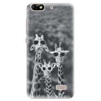 Plastové pouzdro iSaprio - Sunny Day - Huawei Honor 4C