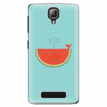 Plastové pouzdro iSaprio - Melon - Lenovo A1000