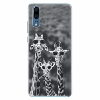 Plastové pouzdro iSaprio - Sunny Day - Huawei P20