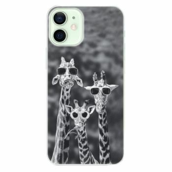 Plastové pouzdro iSaprio - Sunny Day - iPhone 12 mini