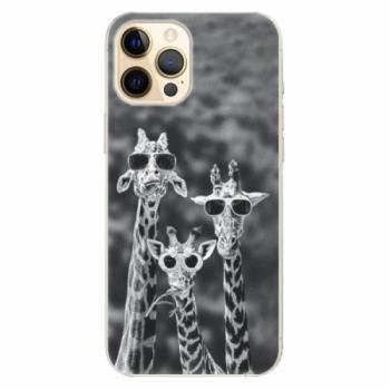 Plastové pouzdro iSaprio - Sunny Day - iPhone 12 Pro