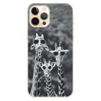 Plastové pouzdro iSaprio - Sunny Day - iPhone 12 Pro Max